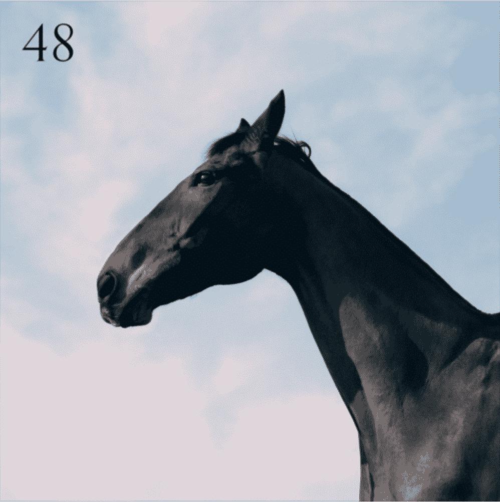 48 Moss Kena